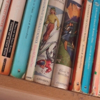 Call for Papers : British Children's Literature in the 21st Century